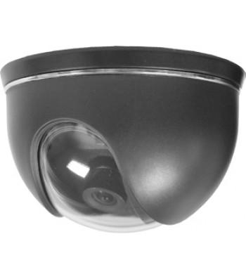Caméra de videosurveillance dôme CCD-D82C/036A