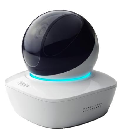 Caméra IP Wifi Home Boule PTZ